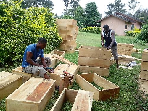 The beehives for the beneficiaries during the construction stage.