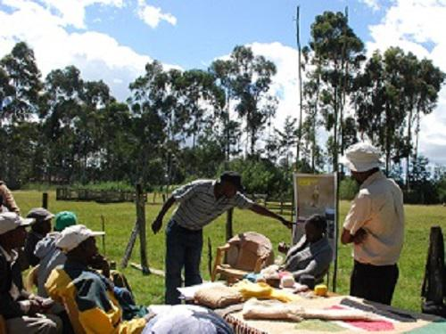 Presentations during Farmers' field day.