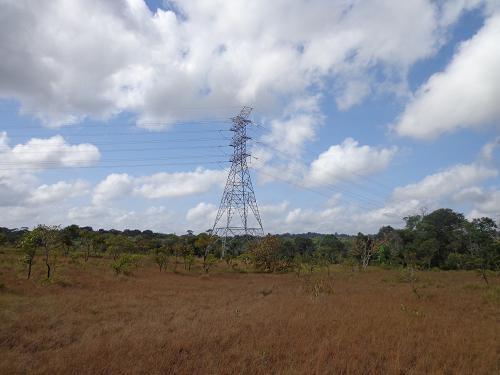 Power line in the Rio Cajari Extractive Reserve.