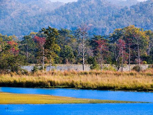 Bardia National Park.