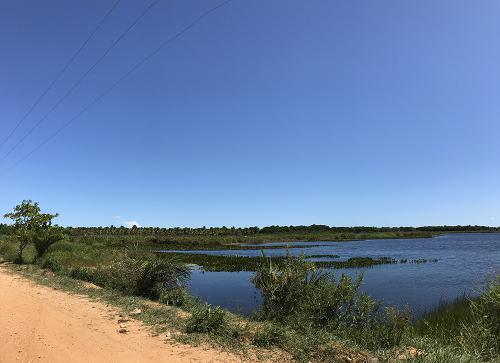 Marituba do Peixe reserve wetlands in the lower São Francisco River basin, southern Alagoas State, Brazil (March 2020). © Gabriela Gama