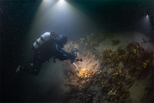 Cristian Lagger taking underwater photo-transects to study the marine biodiversity. © Jordi Chias