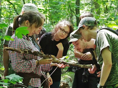 Explaining the role of deadwood in the forest. Photo by Anton Savchenko.