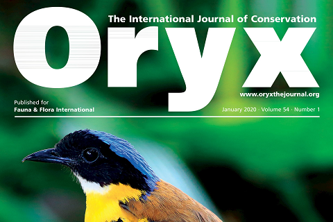 Oryx -The International Journal of Conservation will soon be Open Access thanks to The Rufford Foundation image