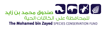 Mohamed bin Zayed Species Conservation Fund – Temporary Change of Focus image