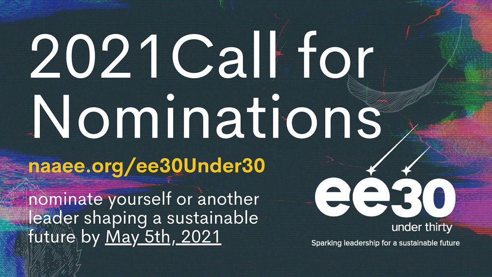 EE 30 under 30 2021 Call for Nominations image